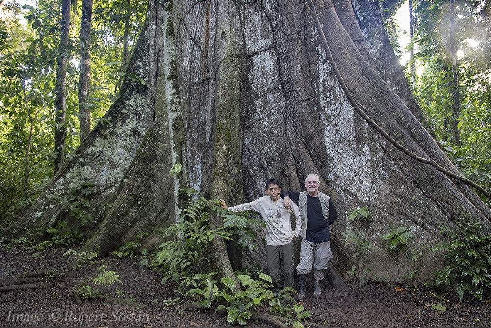 Uriel and myself, dwarfed by an enormous Kapok tree